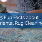 oriental rug cleaning facts